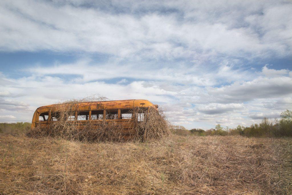 Vine Covered Bus Donna Spencer Evanston Made