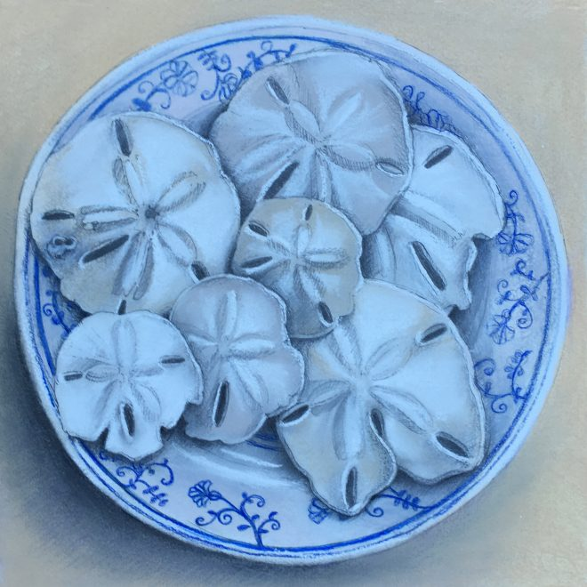 """Caladesi Sand Dollars"" chalk pastel & ink on Arches paper 12x12"""