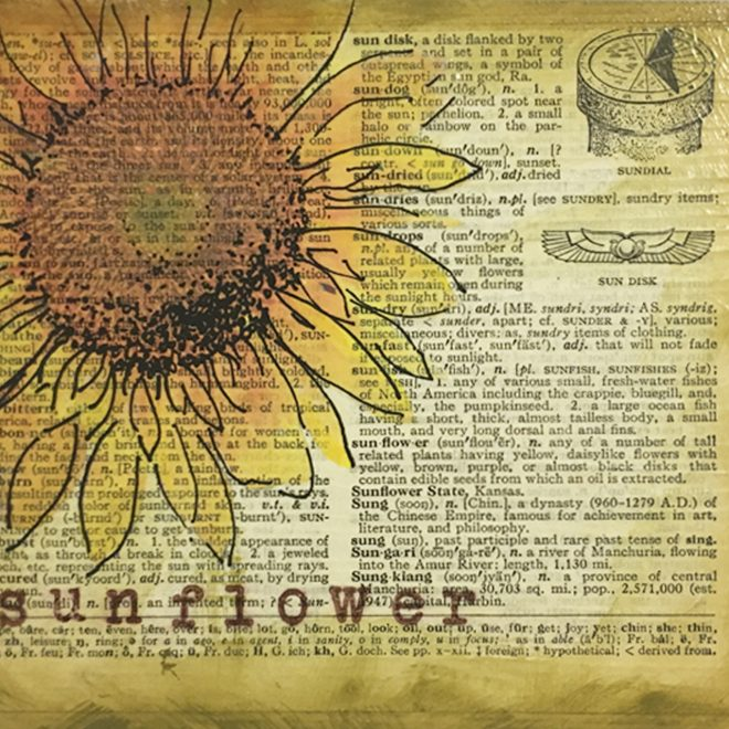 Sunflower Lisa Haskin