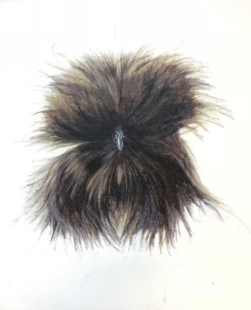 "Black Silky Bantam, colored pencil on paper, 18"" x 24"""