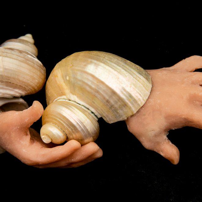 shell-hands-20190220-DSC_1028-2