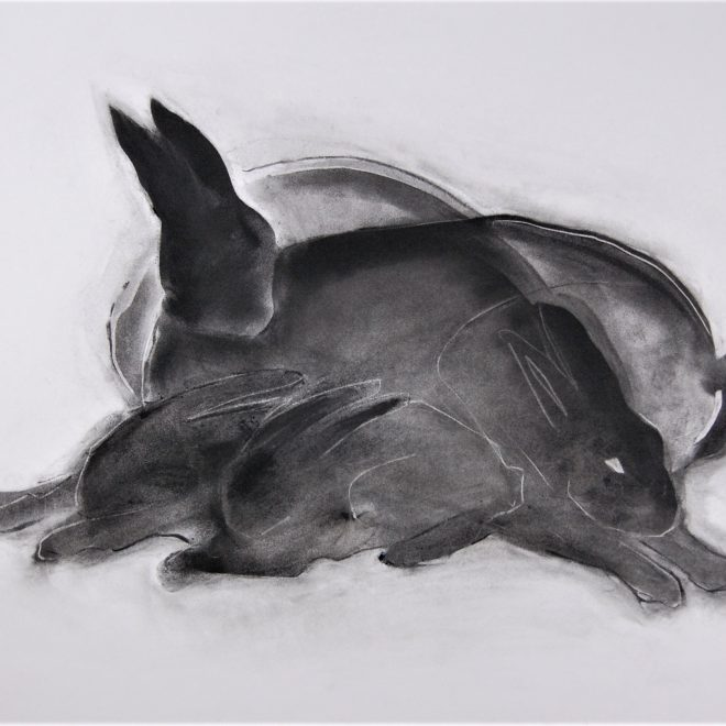 Hares03_20210711