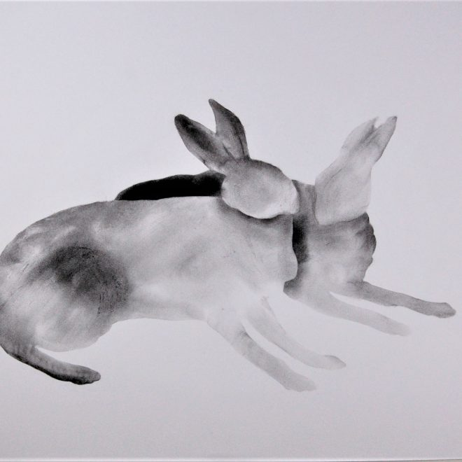 Hares04_20210711