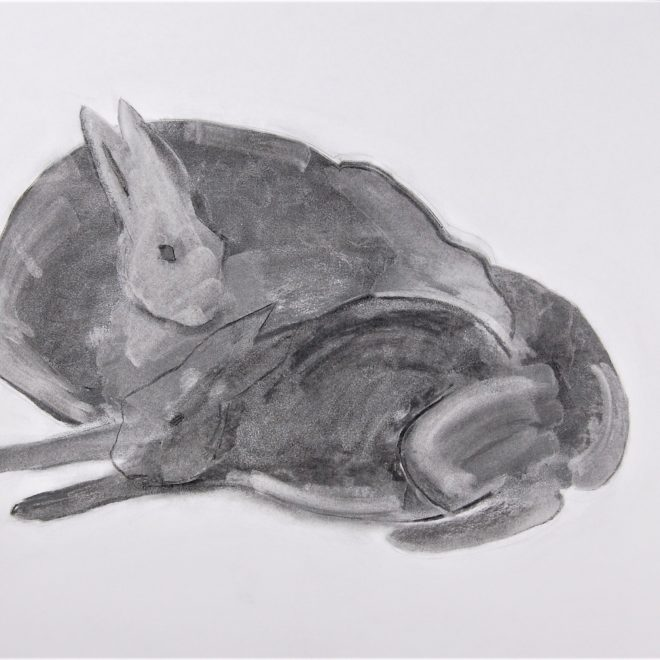 Hares05_2021071