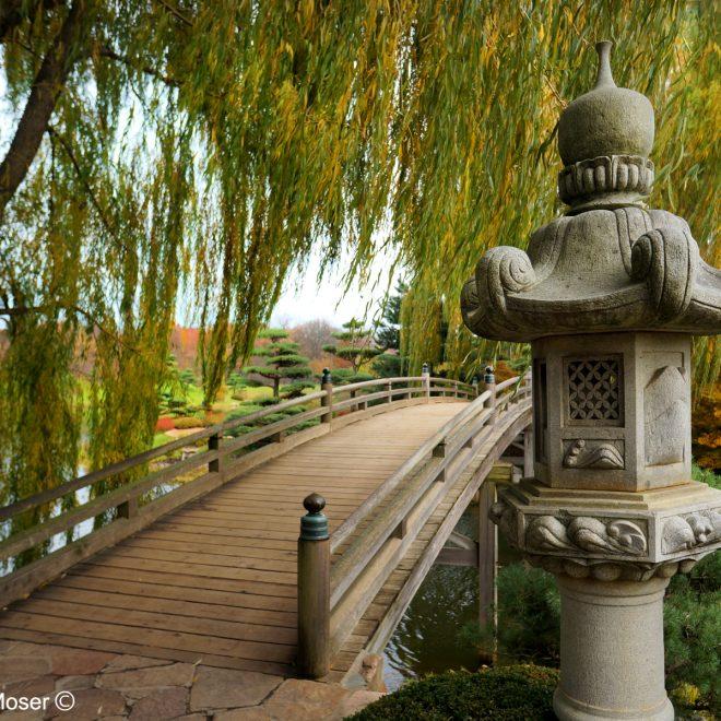 Japanese-Bridge-4-Web2